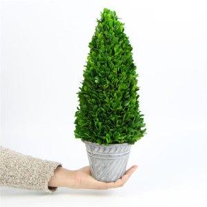 Preserved-Boxwood-Cone-Tree-Topiary
