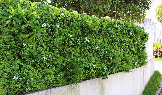 Artificial foliage wall for the outside use