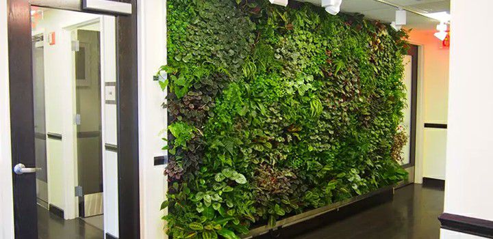 beautify the interiors with sunwing artificial hedge wall