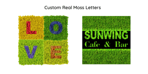 Custom Real Moss Letters
