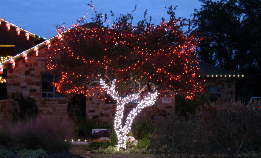 Holiday Tree Wrapping  Lighting  Plantscape Solutions of Austin TX
