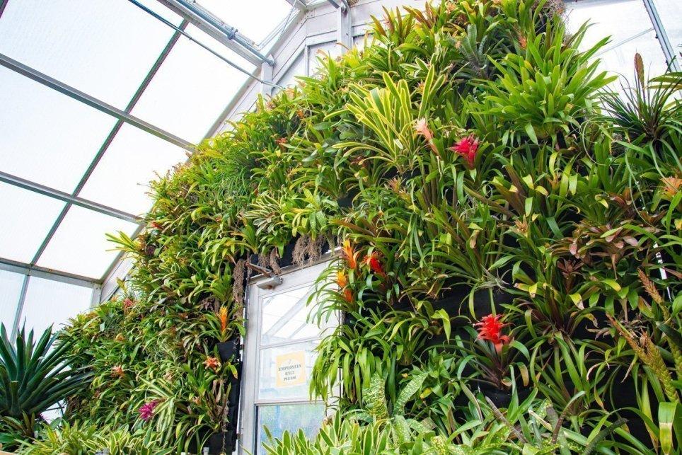 Kingwood Center Gardens Florafelt Vertical Garden