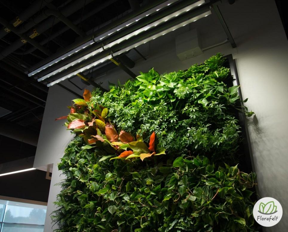 Led Full Spectrum Living Wall Lighting Plants On Walls
