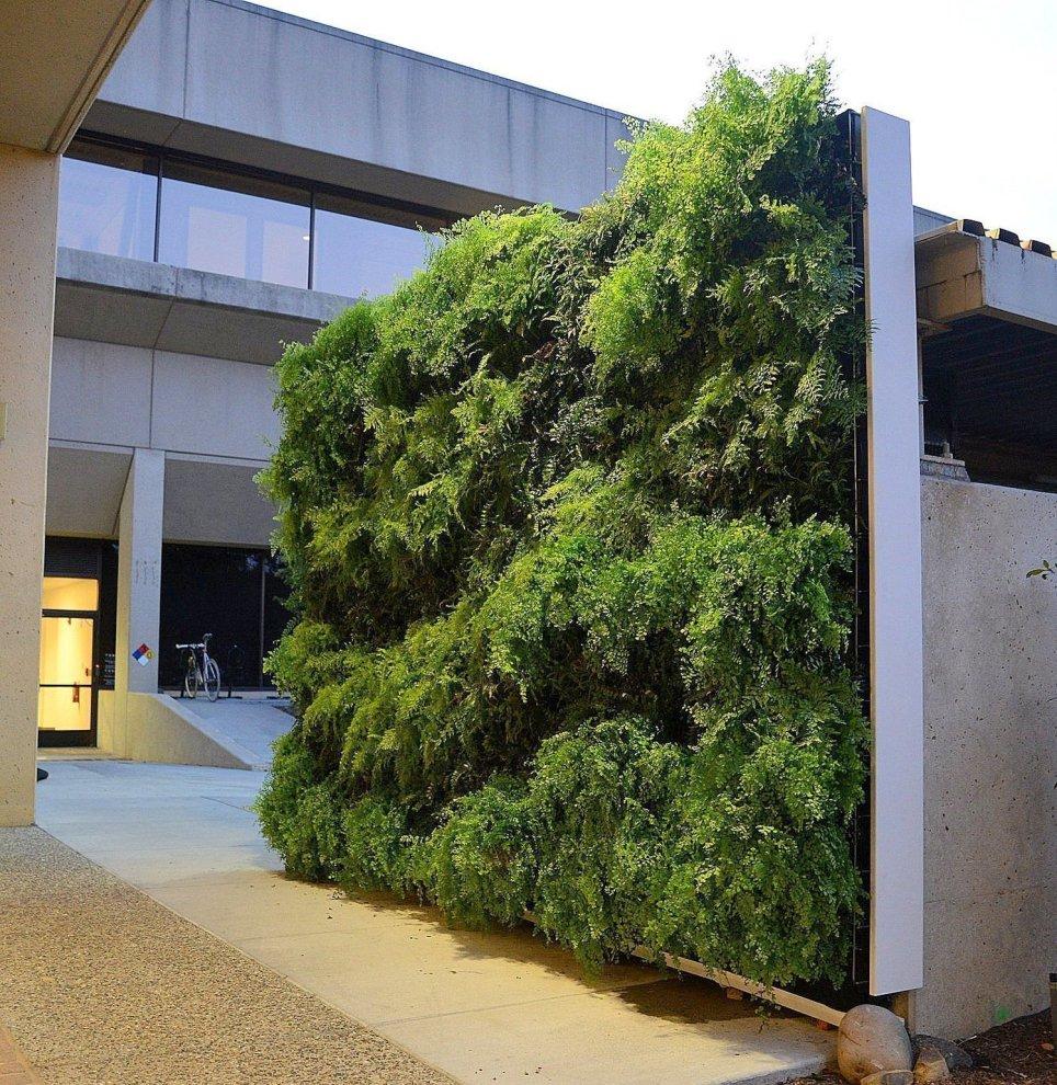 Florafelt Pro System Vertical Garden. Mountain View, California.