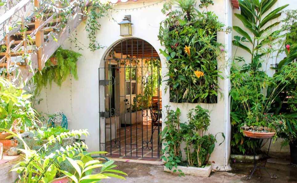 Botanical Vertical Garden For A Miami Courtyard