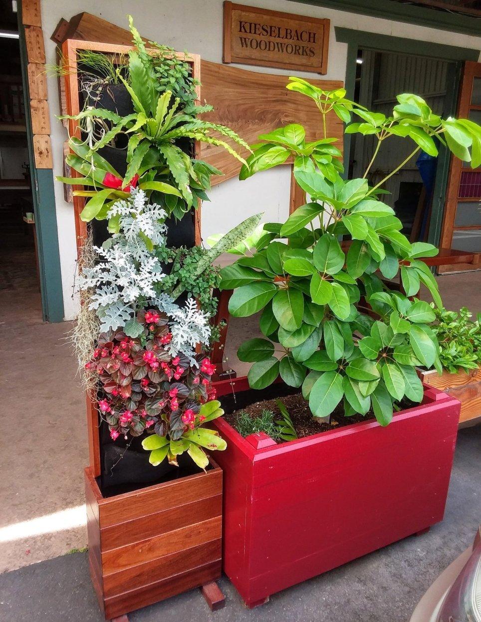 Florafelt Living Walls by Kieselbach Woodworks Hawaii