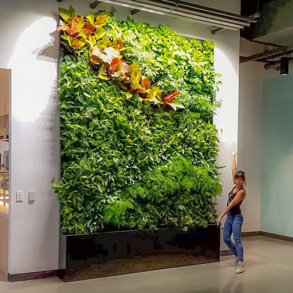 Plants on walls florafelt living wall systems vertical - How to make a living wall ...
