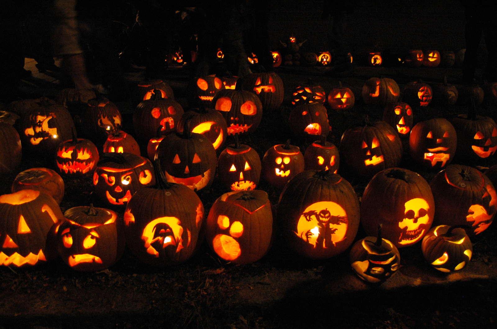 Halloween Kurbisse Schnitzen Ideen Und Sorten