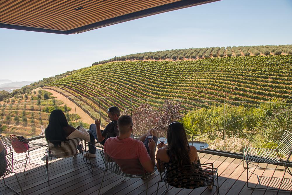 The South Africa Winelands: Franschhoek and Stellenbosch