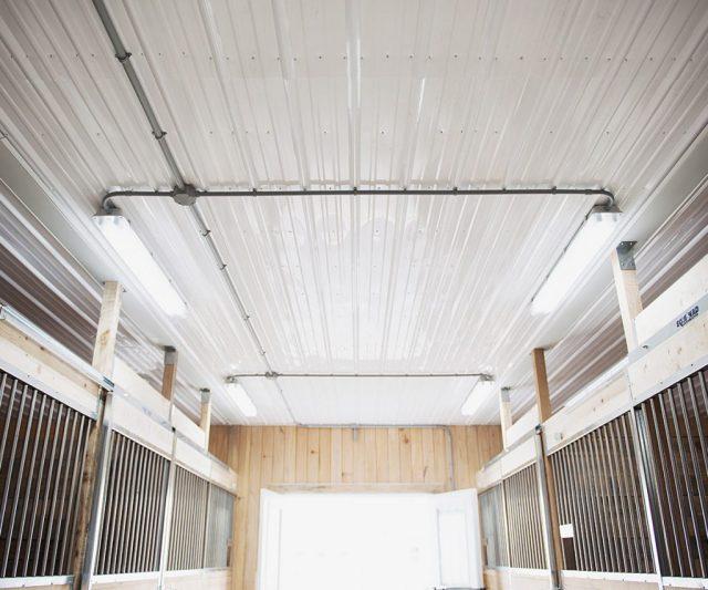 Panneau de PVC Steelcore pour murs et plafonds dans une écurie
