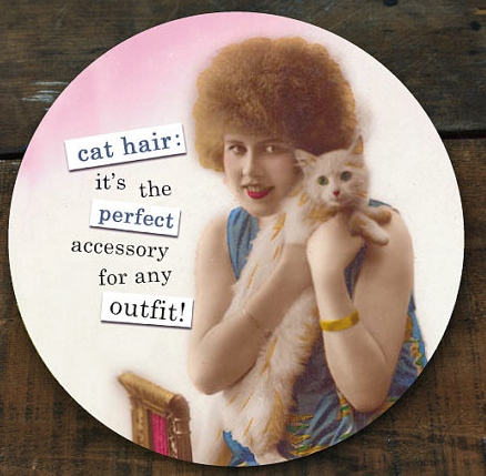 Accessorize with cat hair -- Plaster & Disaster
