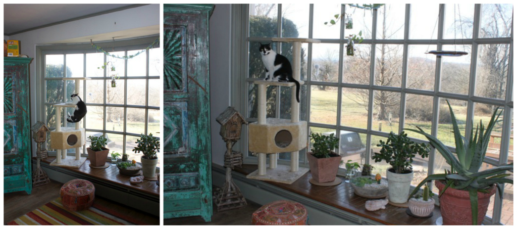 Conceal the cat tower in a bay window -- Plaster & Disaster