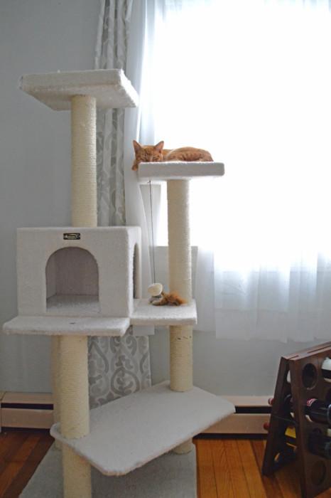 Cat tower -- Plaster & Disaster
