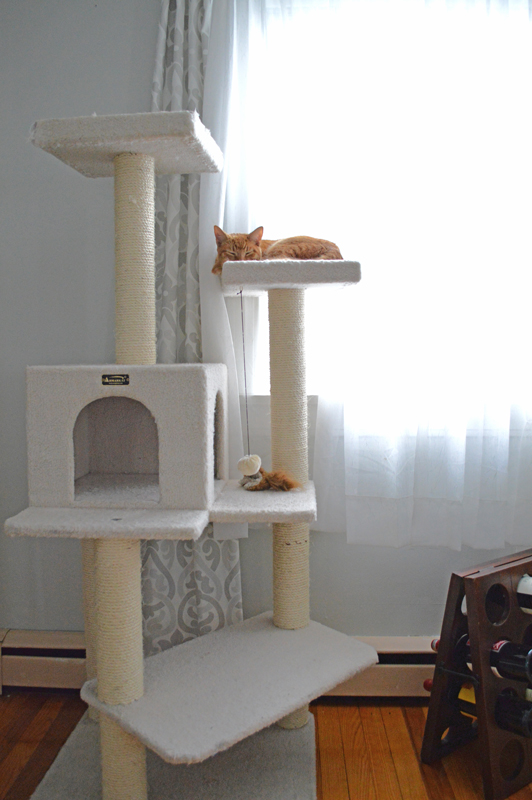 Charmant Cat Tower    Plaster U0026 Disaster