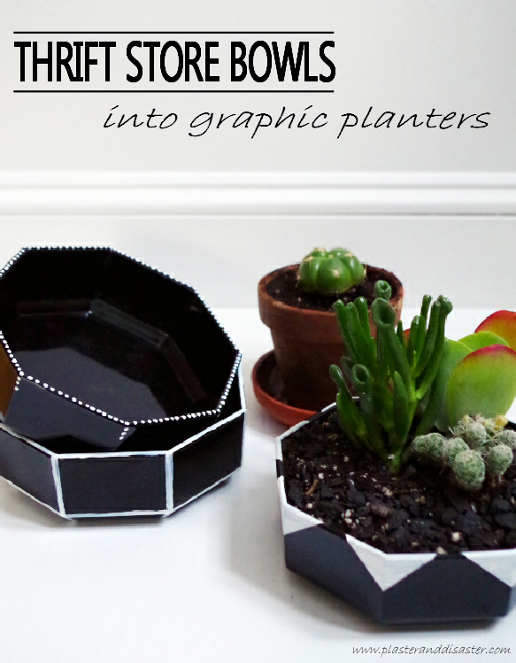 Thrift Store Bowls into Graphic Planters DIY - Plaster & Disaster