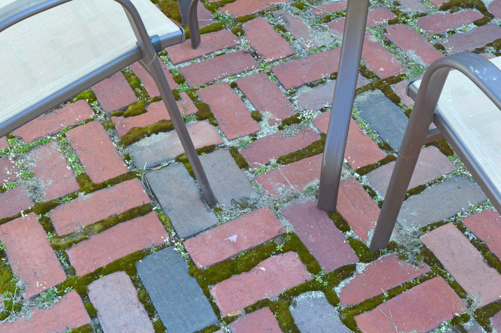 Patio issues -- Plaster & Disaster