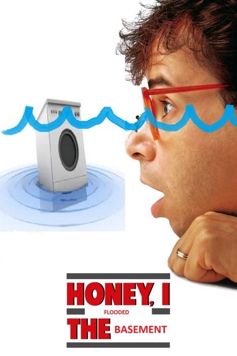 Honey I Flooded the Basement - Plaster & Disaster