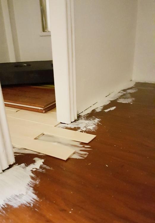 New Tiny Floors - Plaster & Disaster