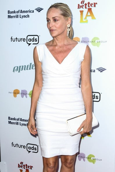 Sharon Stone Plastic Surgery Before After