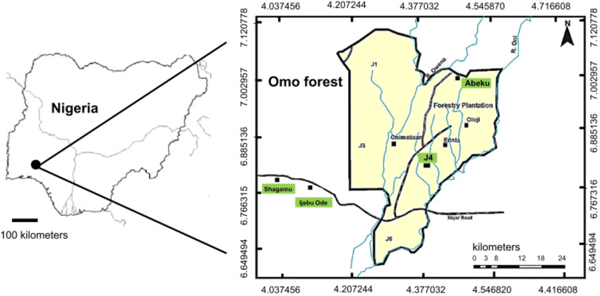 Omo Forest