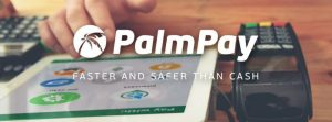 PalmPay Storms The Nigerian's Fintech Space, Challenges OPay