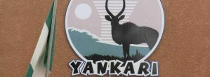 Yankari National Park: A Historical Site You Need To Visit