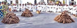 What You Need To Know About The New Yam Festival Celebrated By The Igbos