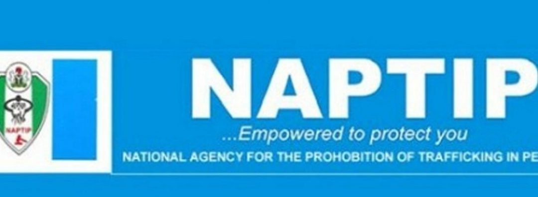 NAPTIP Publishes Names And Photographs Of Some S*xual Offenders In Nigeria