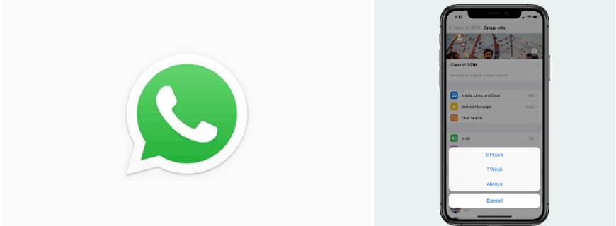 WhatsApp mute forever