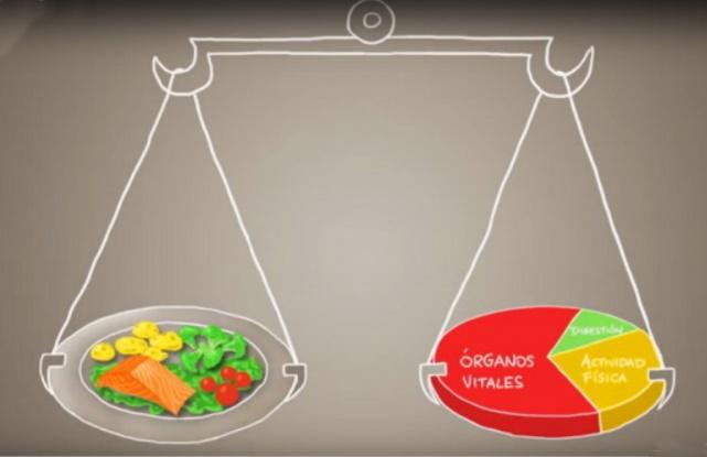 Equilibrando tu balanza interior en tu salud
