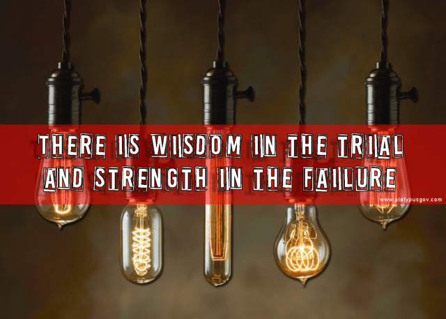 There is wisdom in the trial and strength in the failure