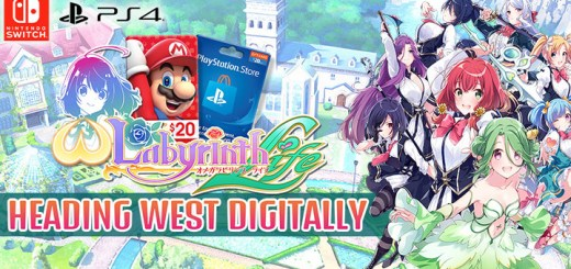 Omega Labyrinth Life, Labyrinth Life, West, Western release, Nintendo Switch, Switch, PlayStation 4, PS4, release date, price, English, D3 Publisher, Matrix Software