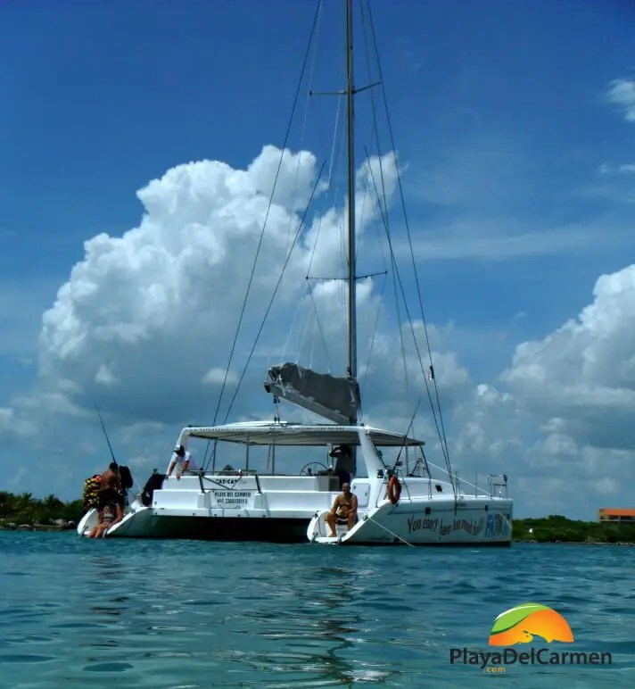 fatcat catamaran boat on water