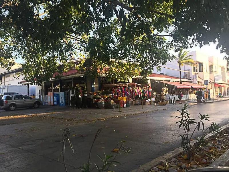 Farmer's Market at DAC in Playa del Carmen