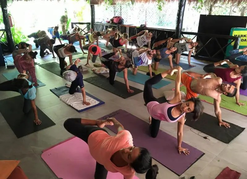 kava kasa yoga