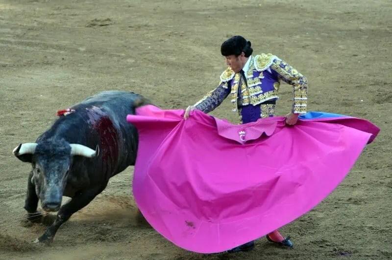 Bullfight in Plaza Nuevo Progreso, Guadalajara