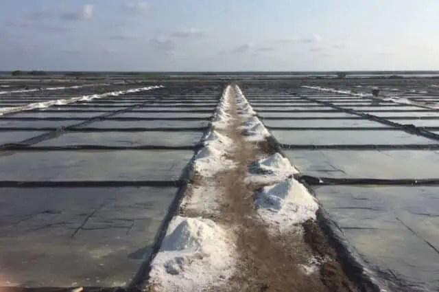 Salt Production in Cuyutlán