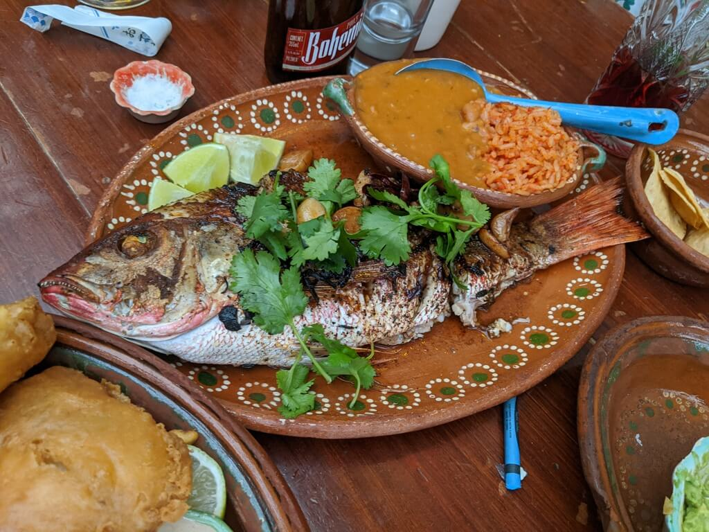 Whole red snapper with rice and beans for making tacos