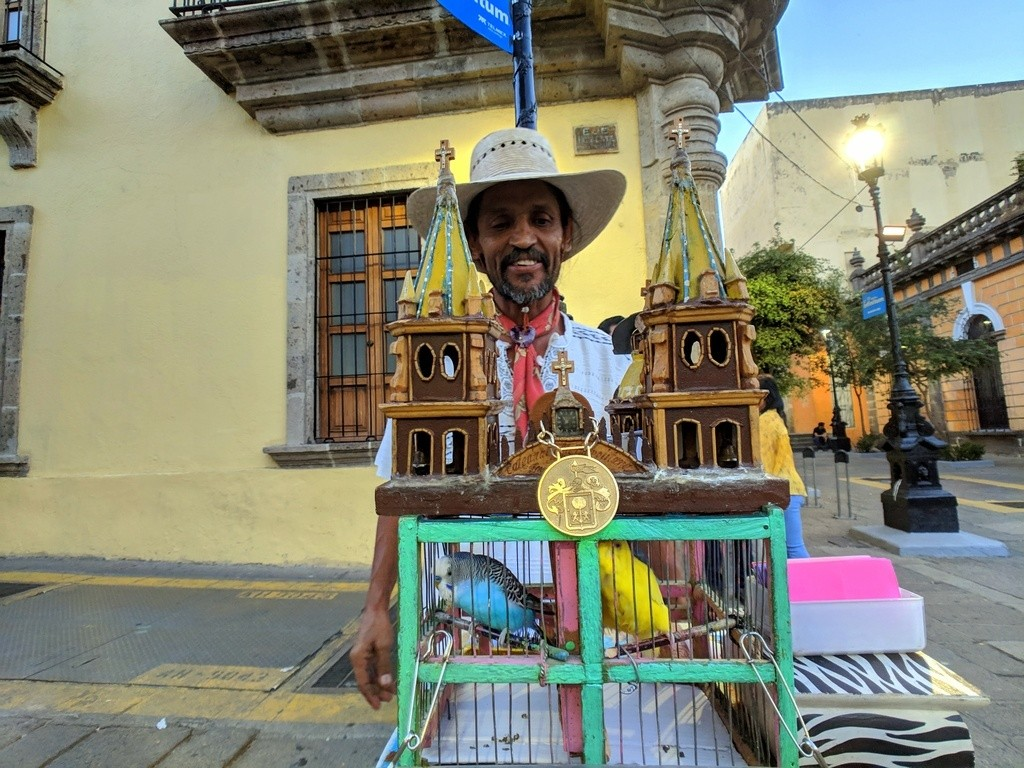Fortune teller with cathedral shaped birdcage and colorful birds in Downtown Guadalajara
