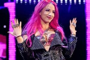 WWE planning an 'all women's' tournament soon!