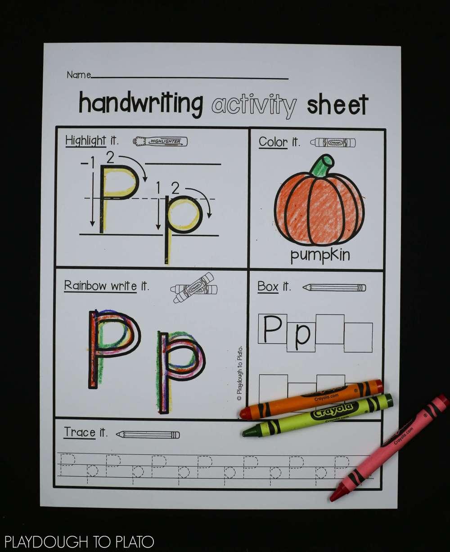 medium resolution of pumpkin