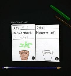 plant activity pack [ 2184 x 1736 Pixel ]