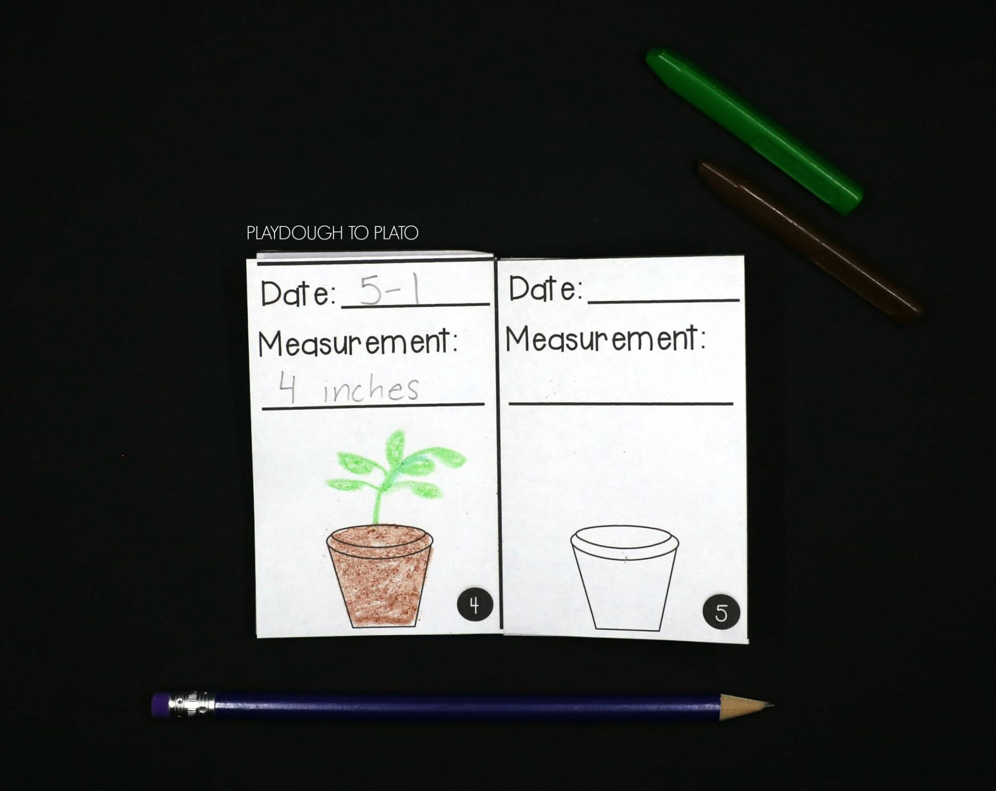 hight resolution of plant activity pack