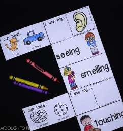 5 Senses Activity Pack - Playdough To Plato [ 3648 x 3648 Pixel ]