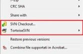 Svn context menu