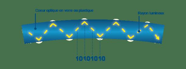 Transmission d'information dans la fibre optique