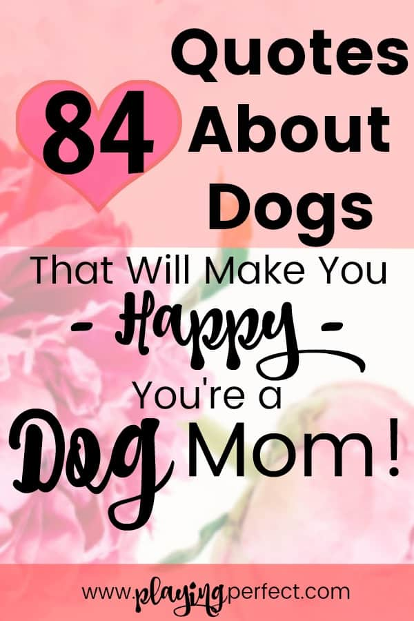84 Quotes About Dogs That Will Make You Happy Youre A Dog Mom