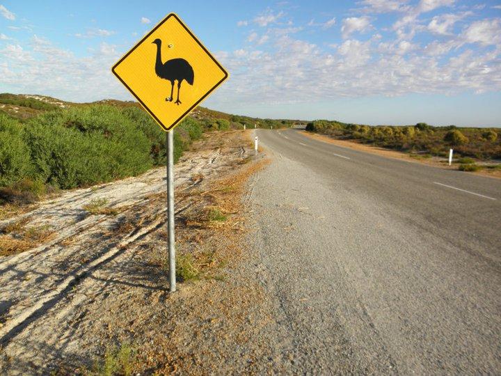 roadsign-australie-whv-12 ©Romain Dondelinger - PlayingTheWorld