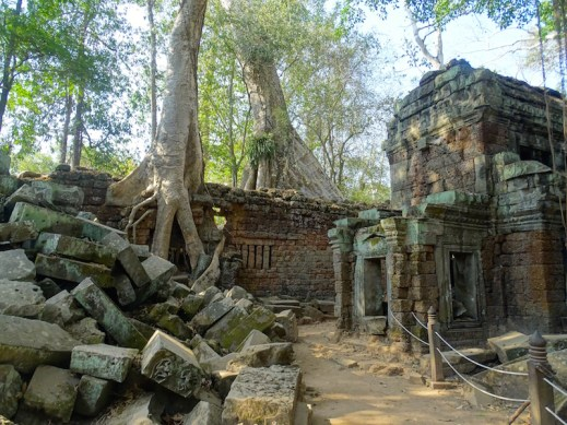 ©playingtheworld-temples-angkor-taprohm-cambodge-voyage-14