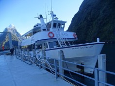 ©playingtheworld-nouvelle-zelande-milford-sound-fiordland-voyage-18